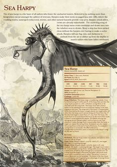 dnd ideas campaign Bored at work dungeons and dragons homebrew approbation of a Witcher Creature and a Harpy. Mythical Creatures Art, Mythological Creatures, Magical Creatures, Sea Creatures, Dungeons And Dragons 5e, Dungeons And Dragons Homebrew, Dungeons And Dragons Characters, Dnd Dragons, Myths & Monsters