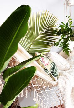Tropical Palms styled in Home Decor.Coastal Style: Tropical White