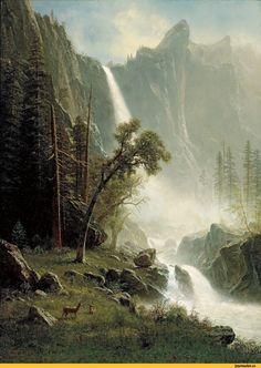 красивые картинки,art,арт,Природа,красивые фото природы: моря, озера, леса,лес