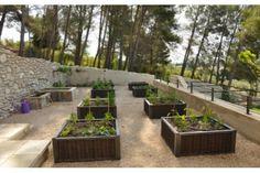 Potager - Vegetable garden