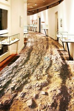 Wil je een nieuwe vloer? Wij geven jou genoeg inspiratie om te kiezen voor de perfecte vloer, bijvoorbeeld een 3D vloer, laminaat of vloertegels.