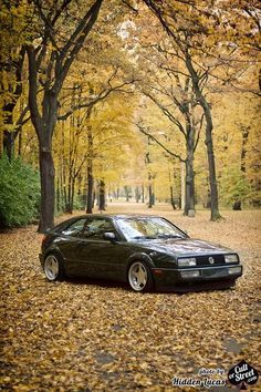corrado in the fall love