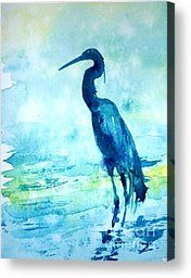 Shore Birds Watercolor Painting Canvas Prints and Shore Birds ...