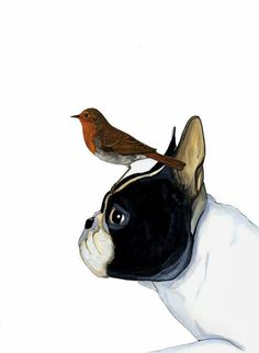 French Bulldog & Bird painting, illustration, by Jeroen Teunen Boston Terrier Love, Boston Terriers, Toy Bulldog, French Bulldog Art, Wow Art, Watercolor Animals, Animal Paintings, Mans Best Friend, Dog Pictures