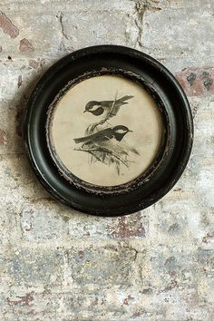 Vagabond Vintage Distressed Wood Framed Vintage Bird Print - I – Modish Store Shabby Chic Furniture, Vintage Furniture, Painted Furniture, Round Picture Frames, Craftsman Interior, Vintage Birds, How To Distress Wood, Bird Prints, Vintage Home Decor