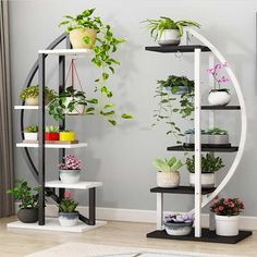Multi storey Indoor A Living Room Chlorophytum Frame Bedroom Household Province Space Balcony Decorate Shelf To Ground - AliExpress Garden Shelves, Plant Shelves, House Plants Decor, Plant Decor, Garden Rack, Chlorophytum, Deco Studio, Decoration Plante, Balcony Decoration