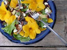 Stella de Oro Salad with Cucumber, Pecans & 2Cheeses