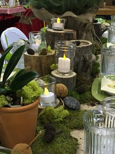 Woodland Themed Table Decorations/Settings