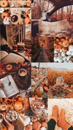 Autumn Cozy, Autumn Art, Autumn Leaves, Fall Images, Fall Pictures, Halloween Season, Fall Halloween, Cute Fall Wallpaper, Autumn Scenes