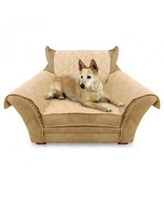 Pet Seat Covers : Thermo Furniture Cover Chair