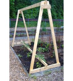 After you measure your 2X4, build the two A frame supports that go on either side of the trellis. Description from homesteadlifestyle.com. I searched for this on bing.com/images