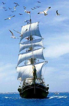 Pirate Ship Tattoos, Sailboat Yacht, Pirate Boats, Old Sailing Ships, Ship Paintings, Boat Art, Tug Boats, Sail Away, Ship Art