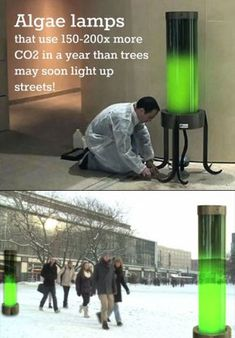 Algae powered street lamps showing innovation and making environmental success. Do you think this could be an answer the extreme carbon surplus? Green Technology, Futuristic Technology, Science And Technology, Technology Gadgets, Business Technology, Technology Design, Technology Innovations, Teaching Technology, High Tech Gadgets