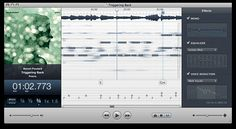 CAPO Reverse Engineering Rock and Roll. Capo is a revolutionary tool that helps you learn the music in your iTunes library. By slowing your music, and presenting a detailed spectrogram, Capo lets you hear and see your music like never before.