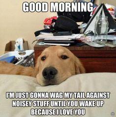 Good Morning Dog Meme | Slapcaption.com