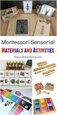 montessori toy Montessori Sensorial Materials Every Child Will Love, Perfect Montessori Activities and Montessori Materials for Preschool, Sensory, Smelling bottles, Color Maria Montessori, Montessori Baby, Montessori Color, Montessori Trays, Montessori Kindergarten, Montessori Practical Life, Montessori Preschool, Montessori Education, Preschool Activities