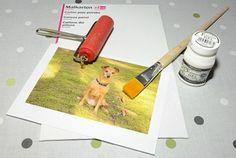 Přenést vlastní fotografii na plátno je jednoduché! | Davona výtvarné návody Origami, Pictures, Origami Paper, Origami Art