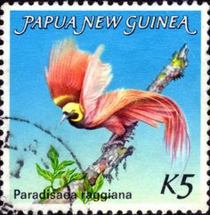 An international postage stamp from the 1980s depicting the Papua New Guinea Raggianna Bird of Paradise.