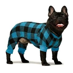 Buffalo Pajamas Blue Buffalo Plaid, Puppies In Pajamas, Puppy Supplies, Designer Dog Clothes, Pullover Designs, Love Your Pet, Dog Items, Pet Clothes, Dog Design