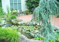 Another example of small garden ponds, with a brick patio.