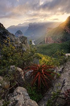 The Blyde River Canyon situated in the Mpumalanga province of South Africa has some of the most fantastic scenery in South Africa. The canyon is the largest in the world. Blyde River Canyon by Mitchell Krog. Provinces Of South Africa, Espanto, Namibia, Out Of Africa, Destination Voyage, All Nature, Africa Travel, Belle Photo, Wonders Of The World