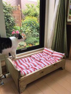 簡単☆猫用の『すのこベッド』をDIY☆|LIMIA (リミア)
