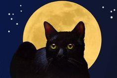 Black Cat and Full Moon Art Print Melody Lea Lamb by MelodyLeaLamb