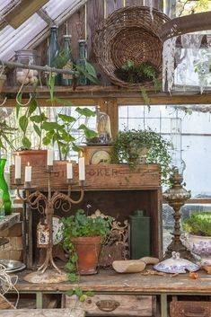 note the details: drawer box lamp bottles. Greenhouse Shed, Greenhouse Gardening, Shabby Chic Greenhouse, Garden Cottage, Garden Pots, Garden Sheds, Garden Shed Interiors, Shed Decor, Gazebos