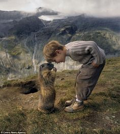 The schoolboy, 8, who has struck up a remarkable friendship with a colony of alpine animals   They are notoriously shy around humans,  but when they see Matteo Walch, they scuttle to his side and show him nothing but affection. Matteo's mother Michaela said: 'Their friendship has lasted for more than four years now.'