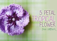 5 Petal Tropical Crochet Flower (Free Crochet Flower Pattern!) ... thanks so for sharing xox