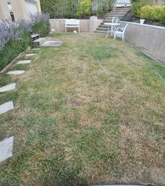 Two weeks to a greener lawn. I wonder if this can bring my dead lawn back to life?