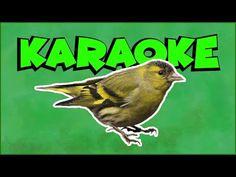 Karaoke, Youtube, Literatura, Youtubers, Youtube Movies