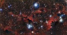 Nuvens vermelhas repletas de poeira e hidrogênio gasoso fazem as vezes de 'asas' da Nebulosa da Gaivota, que 'voa' a cerca de 3.700 anos-luz de distância da Terra, entre as constelações do Cão Maior e do Unicórnio. Já a cabeça do animal é formada por uma grande nuvem de gás catalogada como Sharpless 2-292, enquanto as jovens estrelas azuis viram os olhos.