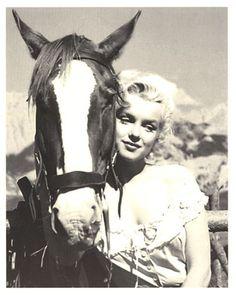 Goodbye, Norma Jean: Marilyn Monroe in Jasper National Park Tempest Storm, Brigitte Bardot, Classic Hollywood, Old Hollywood, Hollywood Glamour, Fotos Marilyn Monroe, Pin Up, Joe Dimaggio, Norma Jeane