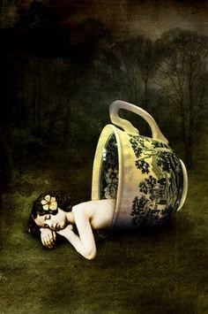 The teacup Catrin Welz--Stein
