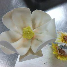 Gum paste magnolia.