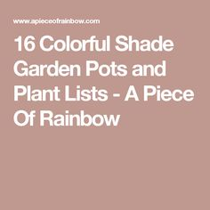 16 Colorful Shade Garden Pots and Plant Lists - A Piece Of Rainbow
