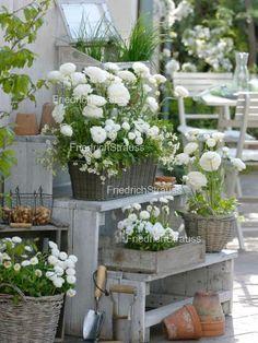 Blumentreppe für meine Terrasse... Yess!!