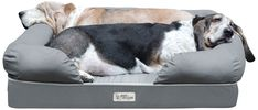 Luxury Large Dog Memory Foam Bed Pet Lounge Soft Comfortable Slate Dogs Gray NEW #na