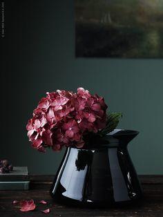 Säsongens bord dukar vi i mustiga färger. Svart DINERA stengods och färgat glas i harmoni med mörkt röda dahlior, kärleksört och små kvistar direkt från höstpromenaden!