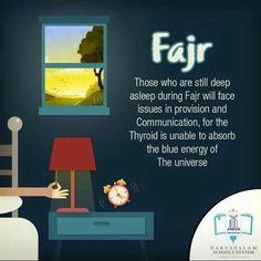 Salah benefits