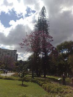 Pelo Brasil: Praça da Liberdade - Belo Horizonte