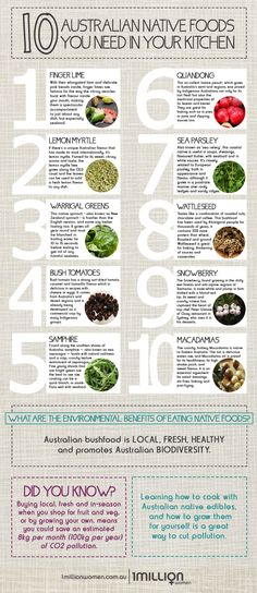 Infographic australian kitchen million native foods women need your top you in infographic top 10 native australian foods you need in your kitchen 1 million women a suburban geelong backyard turned thriving permaculture garden! Australian Native Garden, Australian Plants, Australian Food, Australian Organic, Edible Plants, Edible Garden, Native Foods, Aussie Food, Native Australians
