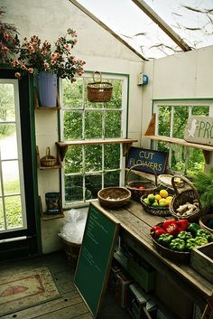 Inside the garden shed.