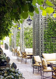 Ritz Paris garden