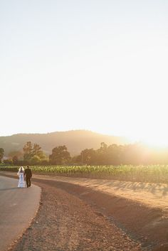 Sonoma Wedding [Destination wedding]