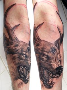wolf with deer horns by bhbettie.deviantart.com on @DeviantArt