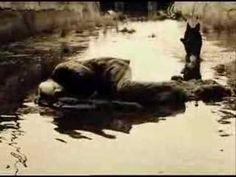 ☞ Andreï Tarkovski ~ Stalker [1979]