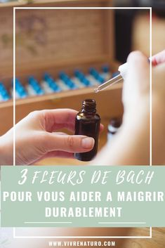 3 Bach flowers to help you lose weight permanently Health And Fitness Articles, Health Fitness, Bach Flowers, Black Seed, Flirt, Health Magazine, Green Life, Essential Oils, Lose Weight