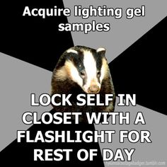 backstage badger. Not a lighting person but I would so do this